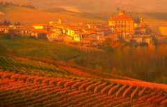The famous wine village of Barolo landscape in late afternoon Fall light.